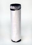 Vzduchový filtr AF25558